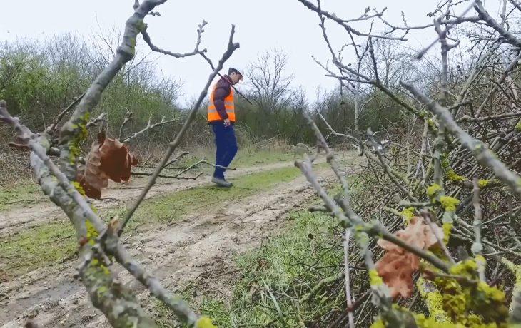 Découvrez en vidéo le métier d'écologue